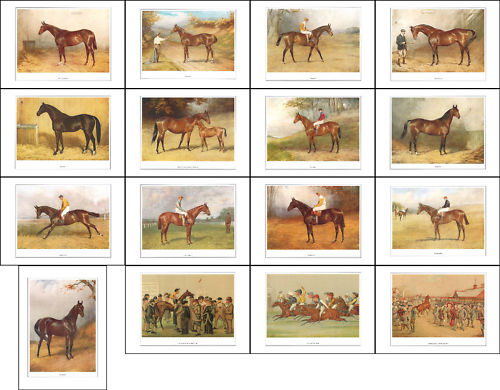 Vanity Fair Reprints - A Fantastic Set Of 16 Racehorses