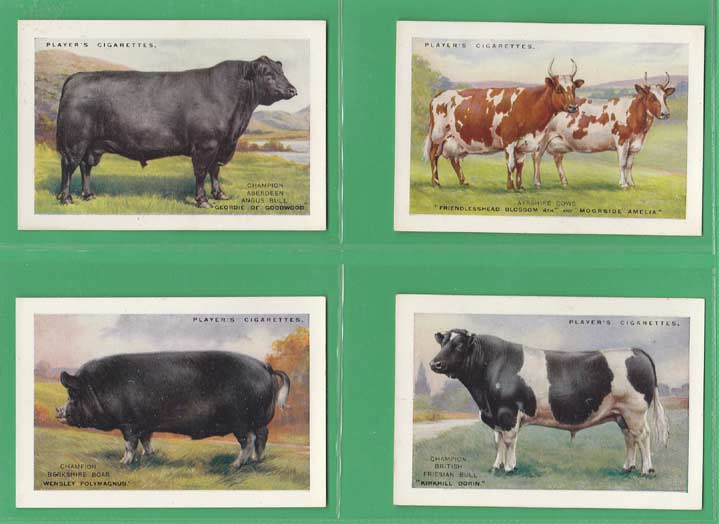 John Player & Sons - Set Of X 20 - British Pedigree Stock - 1925