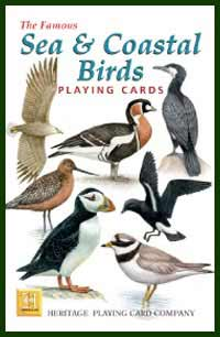 Heritage Playing Card Co. - Boxed Set of Playing Cards + 2 Jokers - Sea & Coastal Birds