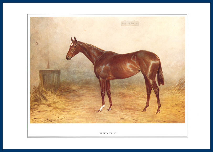 Pack Of 20 Prints - Vanity Fair Reprints - From Our Fantastic Set Of 16 Racehorses - Pretty Polly