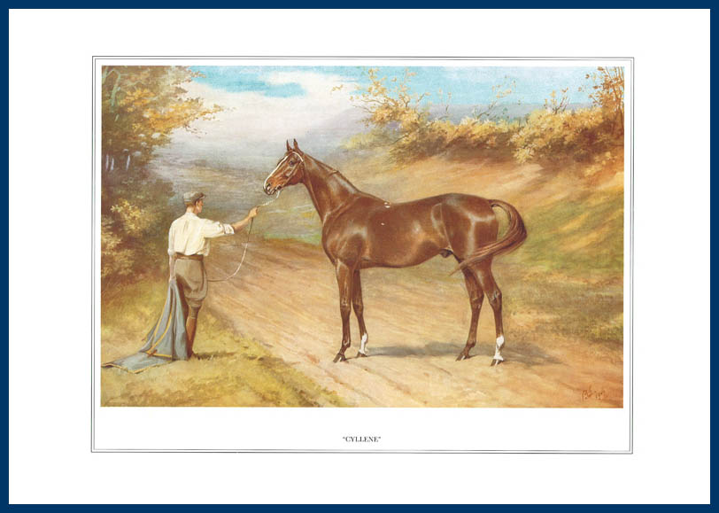 Vanity Fair Reprints - From Our Fantastic Set Of 16 Racehorses - Cyllene