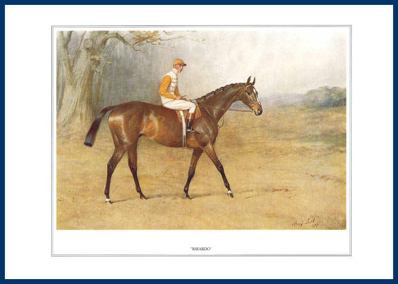 Pack Of 20 Prints - Vanity Fair Reprints - From Our Fantastic Set Of 16 Racehorses - Bayardo