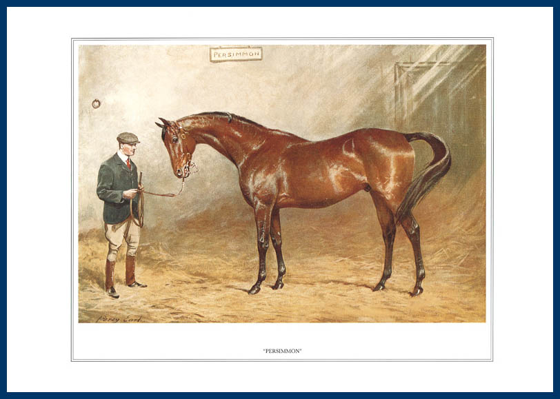 Pack Of 20 Prints - Vanity Fair Reprints - From Our Fantastic Set Of 16 Racehorses - Persimmon