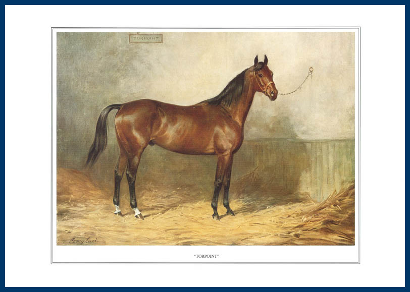 Pack Of 20 Prints - Vanity Fair Reprints - From Our Fantastic Set Of 16 Racehorses - Torpoint