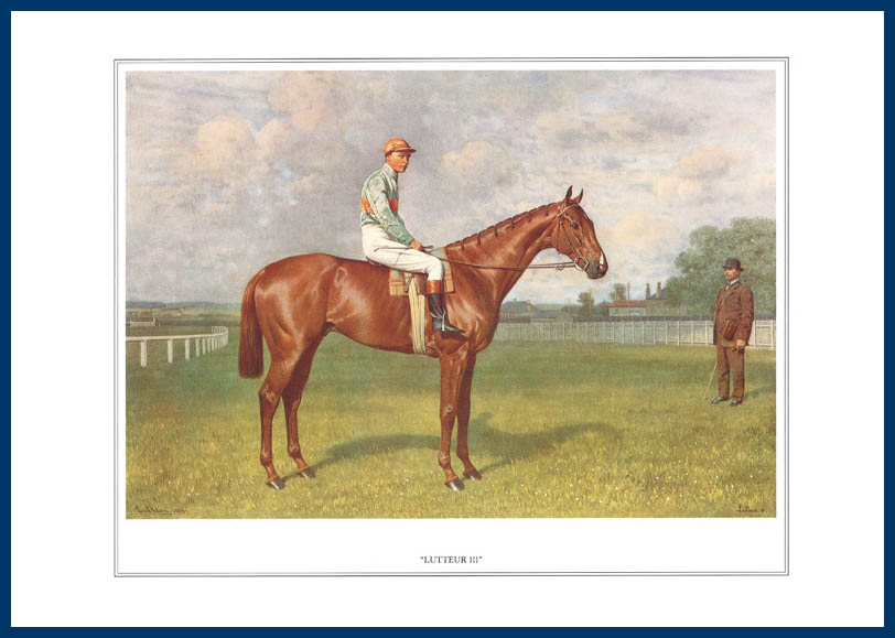 Pack Of 20 Prints - Vanity Fair Reprints - From Our Fantastic Set Of 16 Racehorses - Lutteur Iii