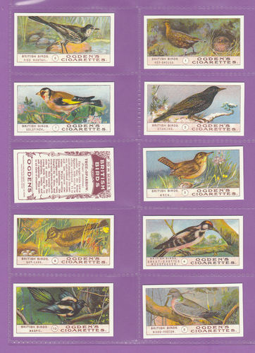 Card Collectors Society - Set Of 50 Ogden's ' British Birds ' Cards