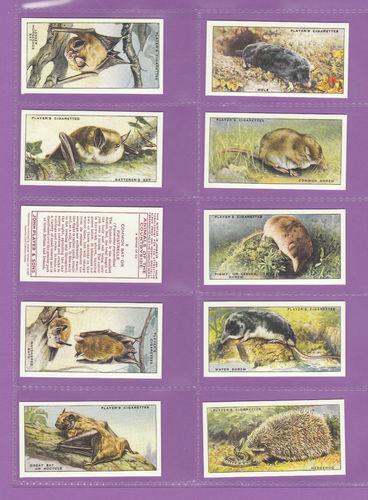 Card Collectors Society - Set Of 50 Player's ' Animals Of Countryside ' Cards