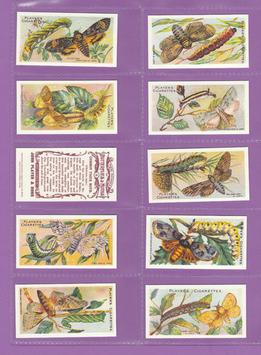 Card Collectors Society - Set Of 50 Player's ' Butterflies & Moths ' Cards