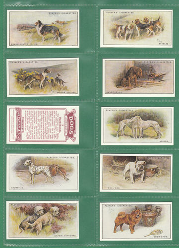 Card Collectors Society - Set Of 50 Player's ' Dogs (scenic Background) ' Cards