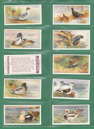 Card Collectors Society - Set Of 50 Player's ' Game Birds & Wild Fowl ' Cards