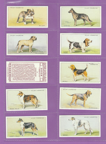 Card Collectors Society - Set Of 50 Wills ' Dogs ' Cards