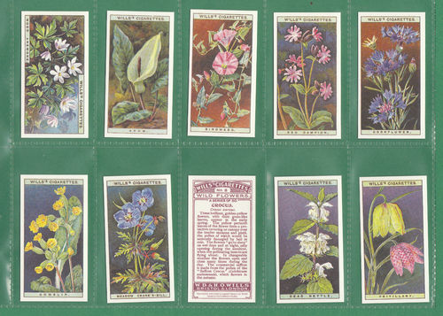 Card Collectors Society - Set Of 50 Wills ' Wild Flowers ' Cards