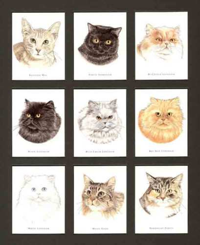 Golden Era - Set Of L 26 Cats (portraits) Cards -1993
