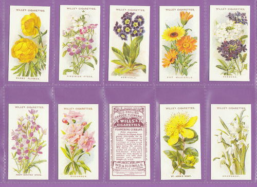 Imperial Publishing Ltd. - Set Of 50 Wills ' Old English Garden Flowers ' Cards