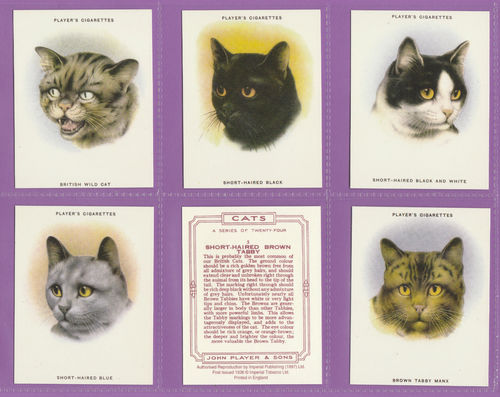 Imperial Publishing Ltd - Set Of 24 Large Player's ' Cats ' Cards