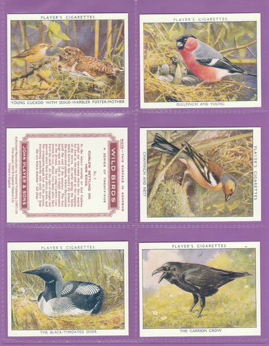 Imperial Publishing Ltd - Set Of 25 Player's ' Wild Birds ' Cards