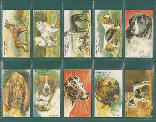 Nostalgia Classics - Set Of 12 - Spratts Patent Ltd. ' Prize Dogs ' Cards