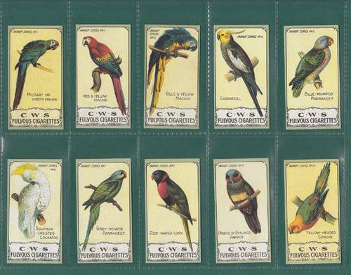 Nostalgia Reprints - Set Of 25 - C.w.s. ' Parrot Series ' Cards