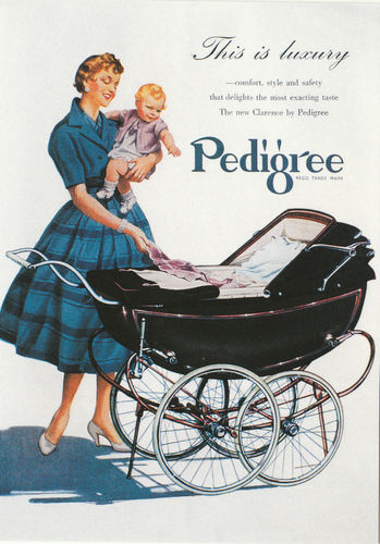 Robert opie advertising postcard - pedigree pram