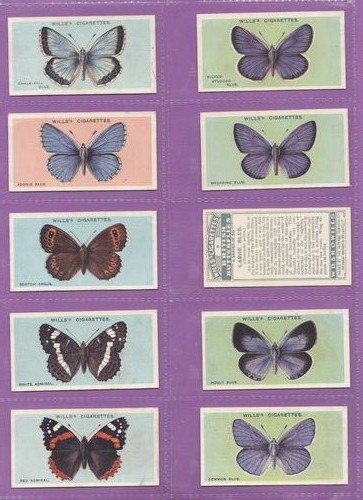 Set Of 50 - W. D. & H. O. Wills Ltd. - British Butterflies - 1927