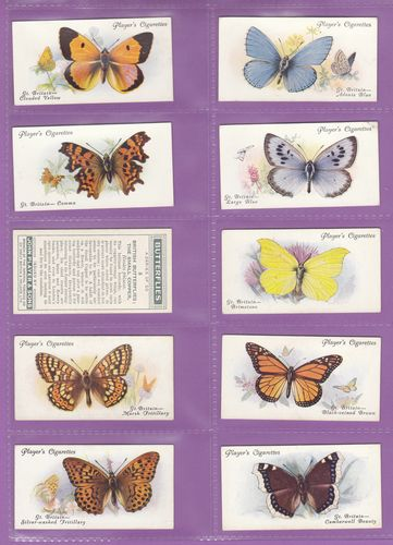 Set Of 50 - John Player & Sons - Butterflies - 1932