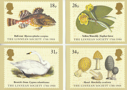 U.k. Post Office - Set Of 4 Bicentenary Of Linnean Society Cards - 1988
