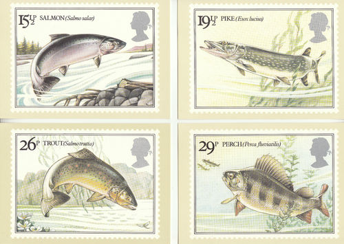 U.k. Post Office - Set Of 4 British River Fishes Cards - 1983