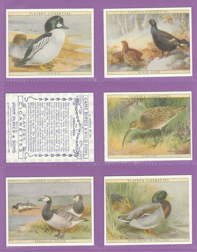 Victoria Gallery - Set Of 25 Players ' Game Birds & Wild Fowl ' Cards